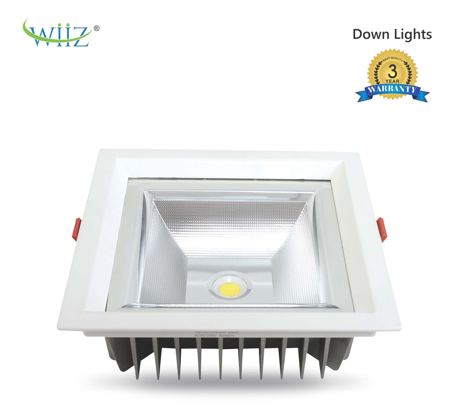 Wiiz Down Light 1